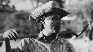 Cesar Chavez In Community Garden