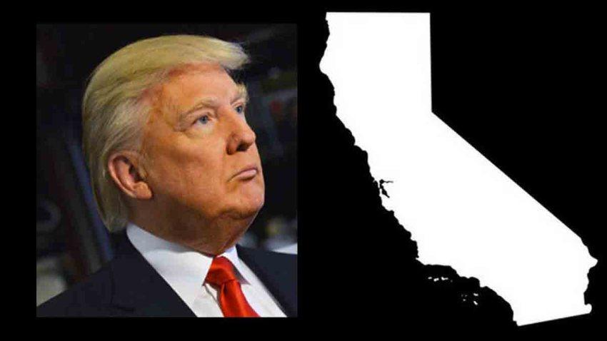 donald trump gana primarias california telemundo 52 los angeles