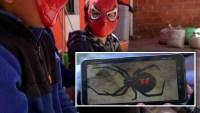 """Hablan hermanitos que se dejaron picar por viuda negra para ser como """"Spider-Man"""""""