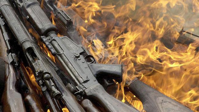 tlmd_armas_fuego1