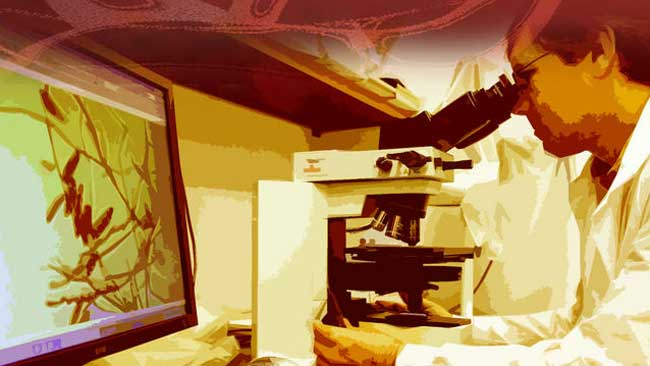 tlmd_doctor_microscopio