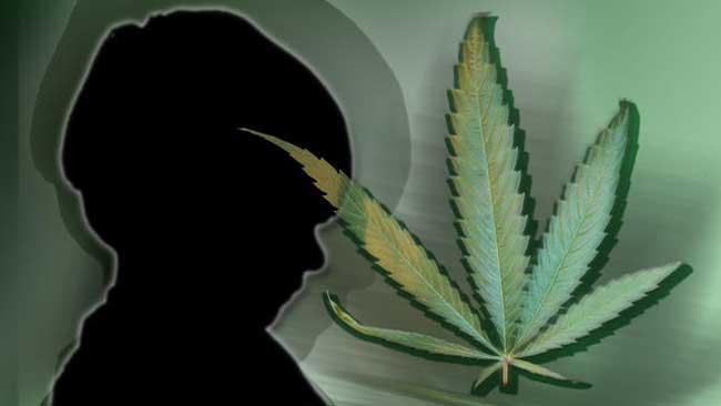 tlmd_marihuana_nino