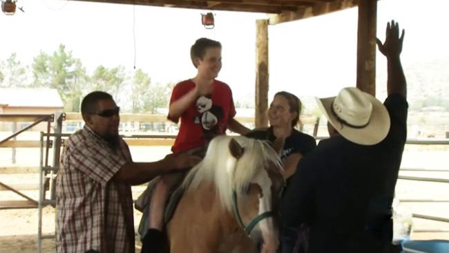 tlmd_sillas_para_montar_caballos_san_bernardino