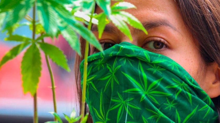 Mujer con cubrebocas con diseño de marihuana