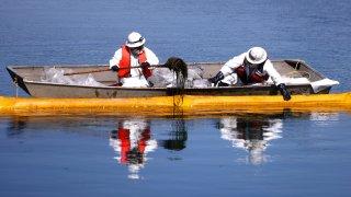 oil spill huntington beach, california