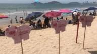 Llenan de cochinitos las playas de Mazatlán