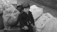 tlmd_japoneses_los_angeles_00