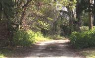 tlmd-sospechosa-Florida-1