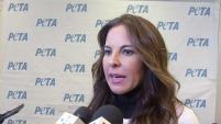 La actriz mexicana pidió denunciar la violencia contra las mascotas y señaló la posible relación entre este tipo de violencia y las matanzas ocurridas en Estados...