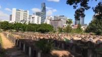 Entre las tumbas del cementerio Teochew, jalonado por los rascacielos de Bangkok, en Tailandia, no hay mejor manera de sentirse vivo que practicar deporte a...