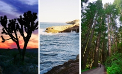 Un paseo por los parque naturales de California
