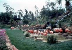 Un vistazo a la historia del Zoológico de Los Ángeles