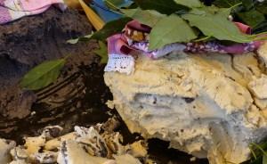 Manjar de dioses: tamales de frijol tradicionales