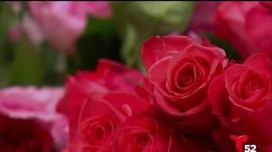 Advertiencia de estafas en el Día de San Valentín
