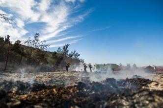 Dónde arden los incendios forestales del sur de California