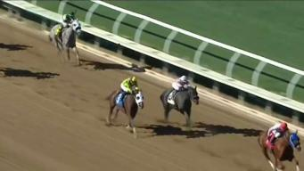 Reportan muerte de otro caballo en Santa Anita