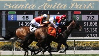 Otro caballo muere en Santa Anita desde diciembre