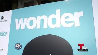 Wonder llega a cines