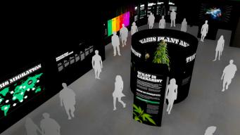 Museo en Hollywood cuenta trayectoria del cannabis