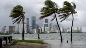 Estudio: aumento del nivel del mar amenaza ciudades costeras