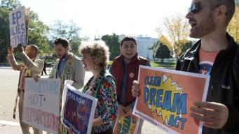 """Estudio: fin de DACA """"devastador"""" para economía de EEUU"""