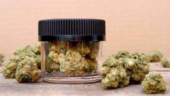 Cierran dispensario ilegal de cannabis en Los Ángeles