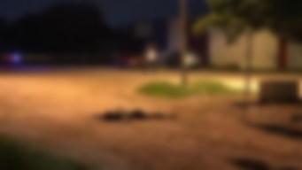 México: hallan cadáveres con carros de juguete encima