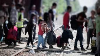 Confirman brote de influenza en albergue de migrantes