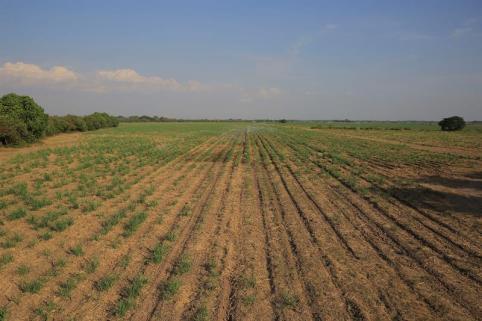 El Salvador declara alerta roja por sequía extrema
