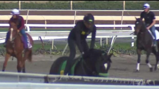 Santa Anita inicia operaciones tras muertes de caballos