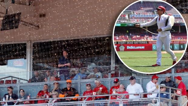 [TLMD - NATL] ¡A esconderse! Abejas irrumpen en juego de béisbol