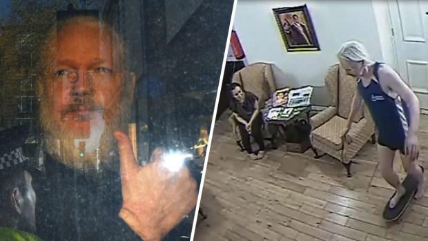 Video: vistazo a la vida Julian Assange en embajada de Ecuador
