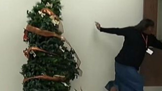 Video: Mira por qué huye aterrorizada del árbol