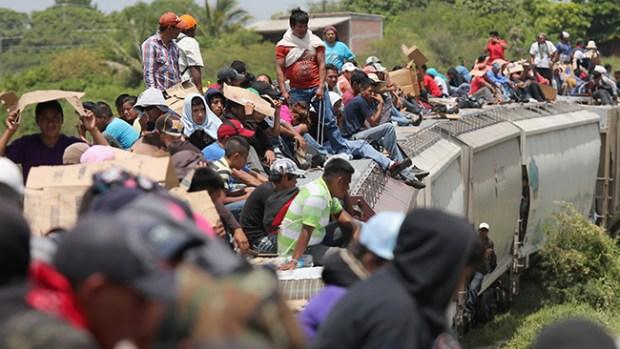 "Video: Descarrila ""La Bestia"" al sur de México"
