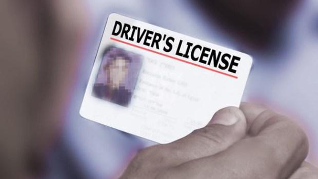 Video: Se intensifica lucha por licencias