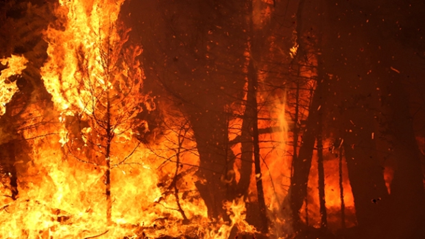 Video: King Fire consume sobre 82,000 acres
