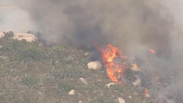 [TLMD - LA] Bomberos luchan contra incendio de maleza