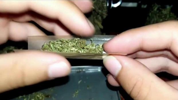 Crece el mercado negro de venta de marihuana