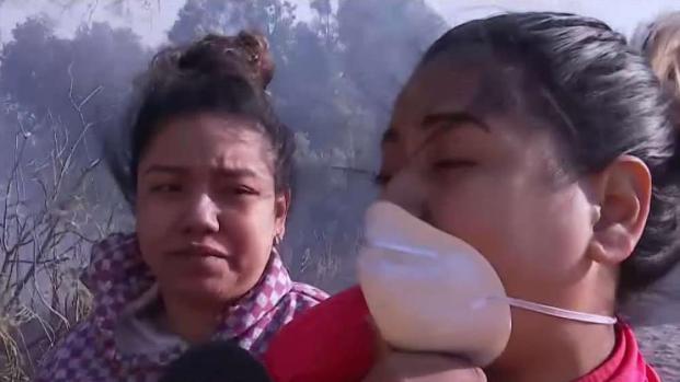 Familia pierde sus animales en Incendio Easy