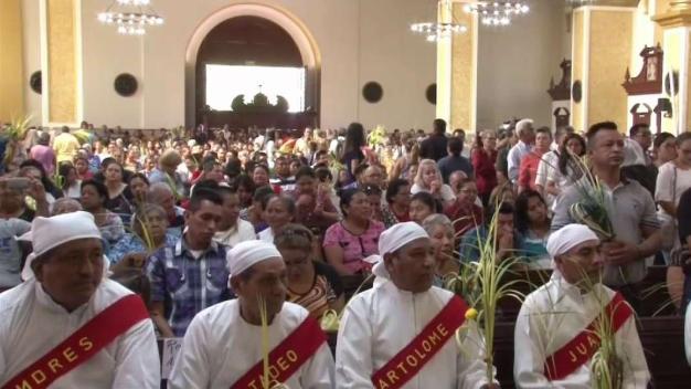 Católicos celebraron Domingo de Ramos