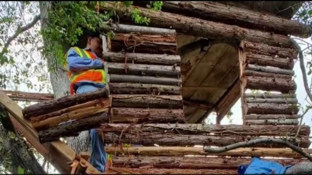 Policía arresta a sospechoso de robo en casa de árbol