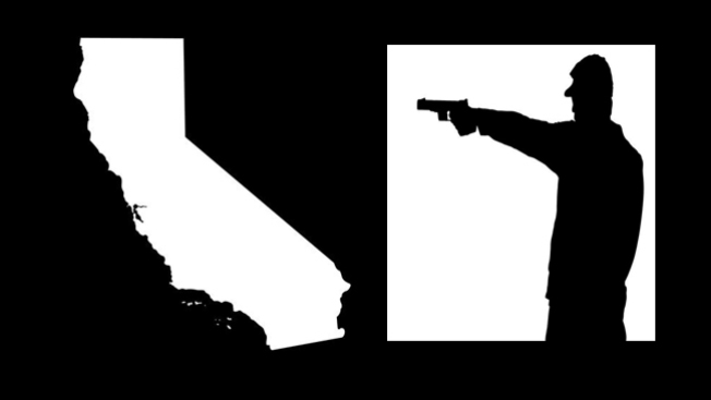 Aprueban polémica ley sobre armas