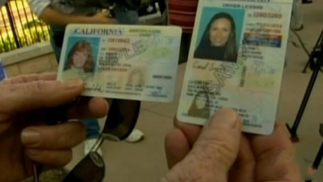 Todo sobre licencias para migrantes