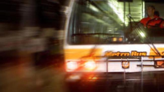 Cambios en el transporte público por entrega de los Oscar