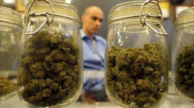 Van contra vendedores de marihuana